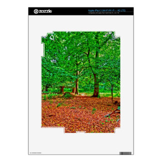 New Forest National Park Hampshire England Woods Skins For iPad 3