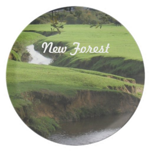 New Forest Dinner Plates