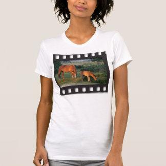 New Forest ponies filmstrip shirt