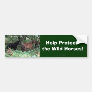 New Forest Ponies of Hampshire England Bumper Sticker