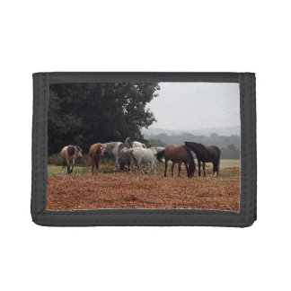New Forest Ponies of Hampshire England Wallet