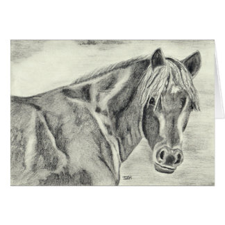 New Forest Pony (a237) Card