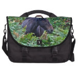 New Forest Pony Photo for Horse-lovers Laptop Bags