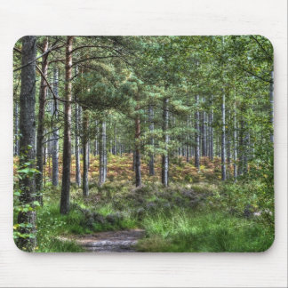 New Forest Woodland Trees Nature Scene Mouse Pad