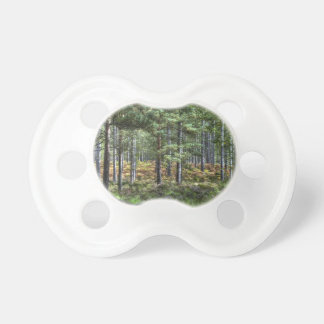 New Forest Woodland Trees Nature Scene Pacifier