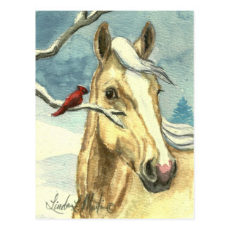 New Friend Wild Horse Post Card