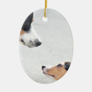 new friends - 001 ceramic ornament