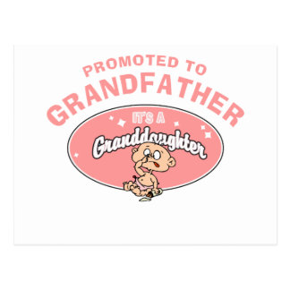 New Granddaughter Promoted To Grandfather Postcards