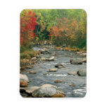 New Hampshire Fall Magnets