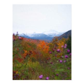 "New Hampshire Folleto 8.5"" X 11"""