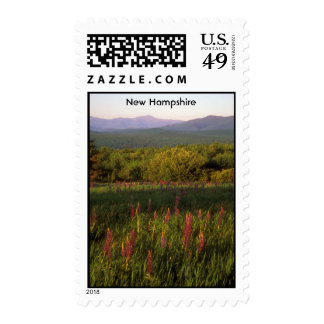 New Hampshire Lupine Field Presidential Range Postage Stamp