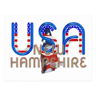 New Hampshire Patriot Postcard