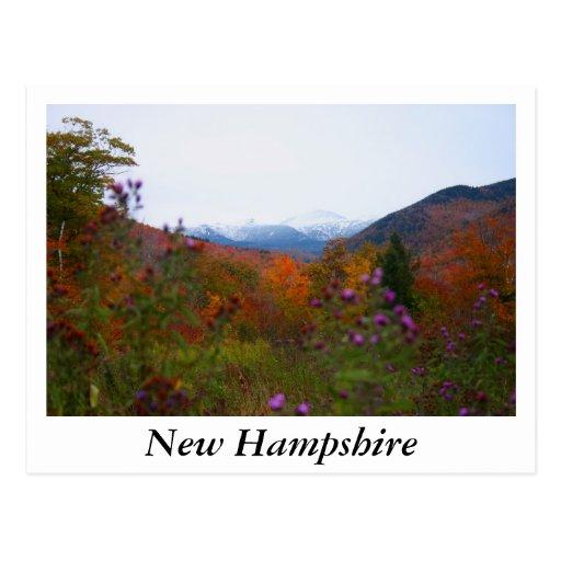 New Hampshire Postal