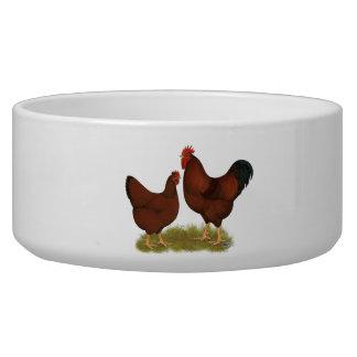 New Hampshire Reds Pet Food Bowl