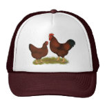 New Hampshire Reds Trucker Hat