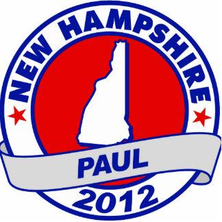 New Hampshire Ron Paul Esculturas Fotograficas