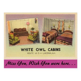 New Hampshire, White Owl Cabins, Laconia Postcard
