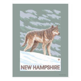 New HampshireWolf Scene Postcard