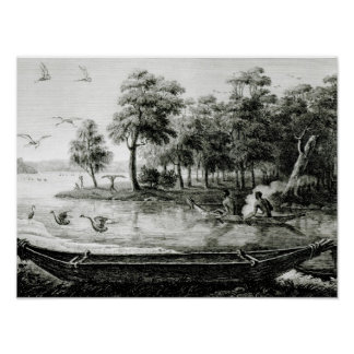 New Holland: New South Wales Print