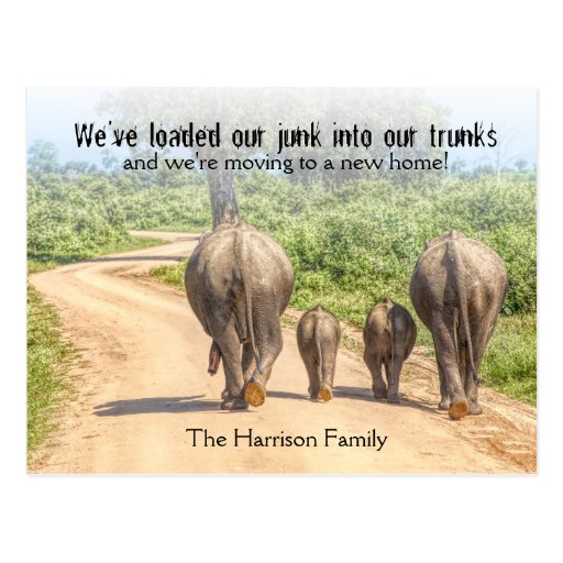 New Home Elephants We're Moving Announcement Funny Postcard