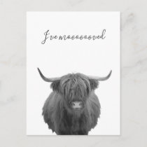 New Home Moving Announcement Highland Cow