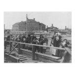 New Immigrants Landing at Ellis Island New York Postcard