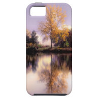NEW iphone 5  Autumn Reflections case iPhone 5 Cases
