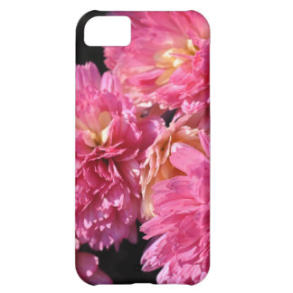 NEW iphone 5 Pink Petals  case Cover For iPhone 5C