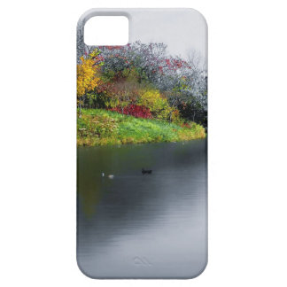 NEW  iphone 5 Silver Duck Pond iPhone 5 Case