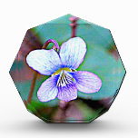 New Jersey Common Violet Awards