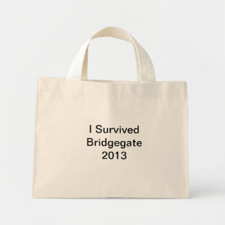 New Jersey Governor Christie Bridgegate 2013 Bags