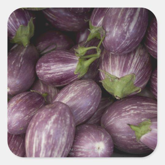 New Jersey grown purple eggplants Square Sticker