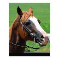 New Jersey Horse Letterhead