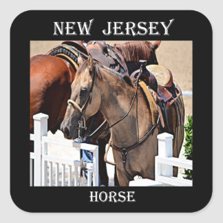 New Jersey Horse Square Sticker