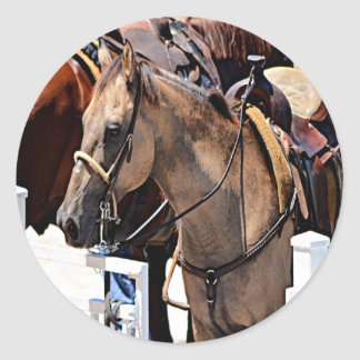 New Jersey Horse Classic Round Sticker