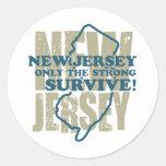 New Jersey Pegatina Redonda