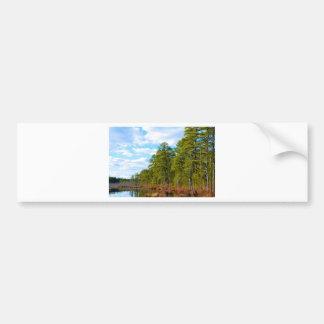 New JErsey Pine Barrens in Winter Bumper Sticker