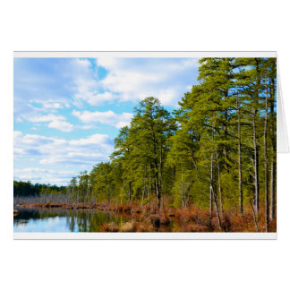 New JErsey Pine Barrens in Winter Card
