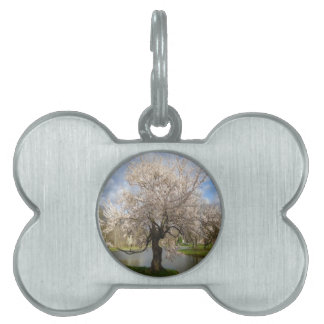 New jersey spring nature design pet name tag