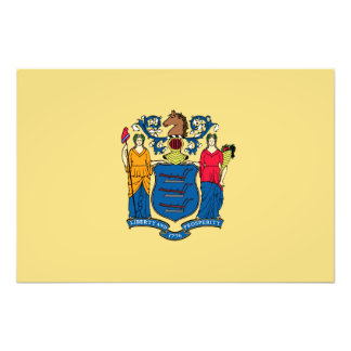 New Jersey State Flag Photographic Print