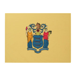 New Jersey State Flag Wood Canvas