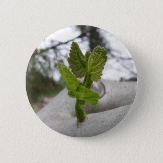 New life idea concept button
