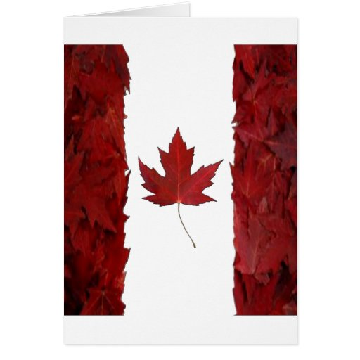 new maple flag canadian greeting card