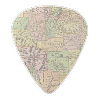 New Mexico Acetal Guitar Pick