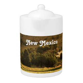 New Mexico Countryside