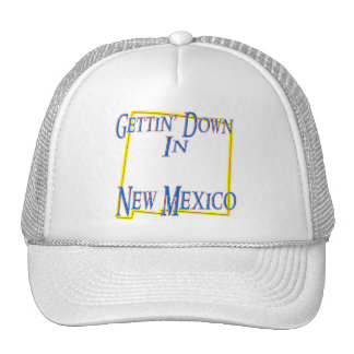 New Mexico - Gettin' Down Hat