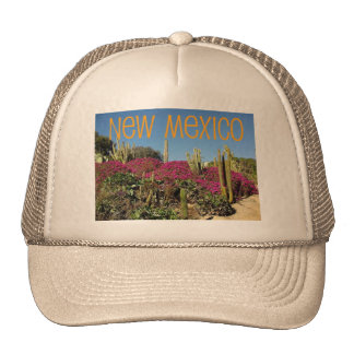 New México Gorro