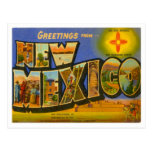 New Mexico Greetings From US States Postcard