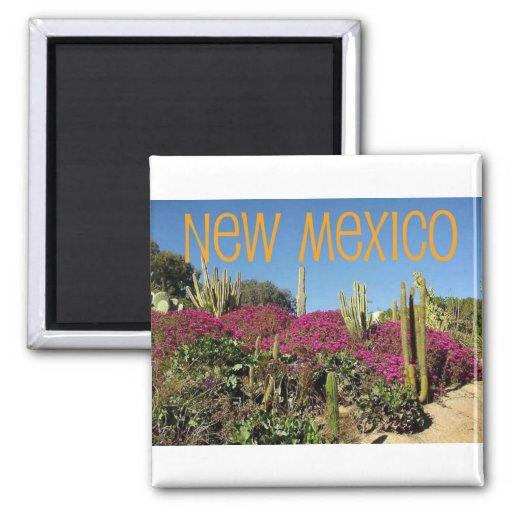New México Iman De Frigorífico