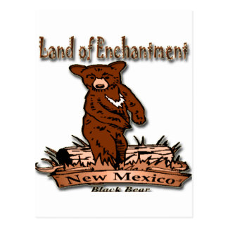 New Mexico Land of Enchantment Bear Postcard